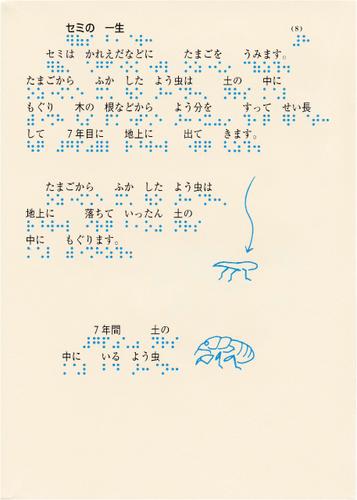 196-8.jpg