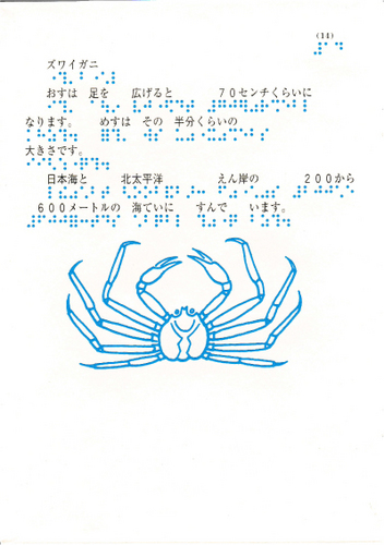 198-14.jpg