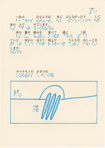 198-19.jpg