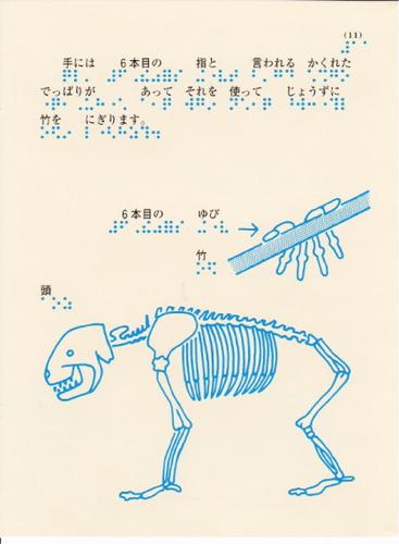 205-11.jpg