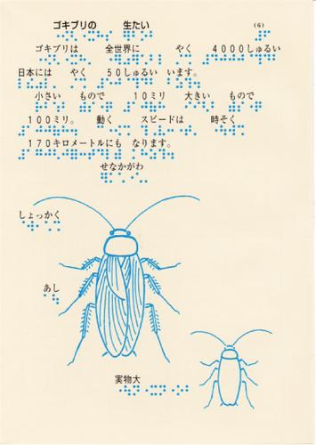 206-6.jpg