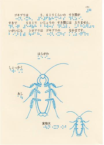 206-7.jpg
