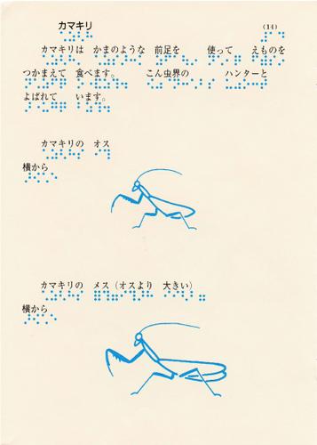 teruki202-14.jpg