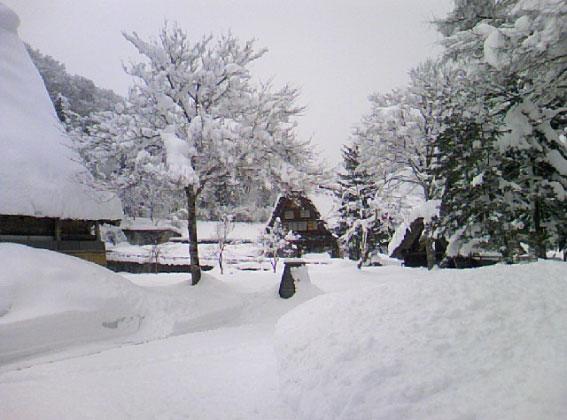 sirakawa-8.jpg