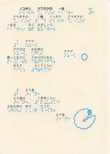 208-8.jpg