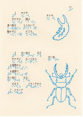 208-9.jpg