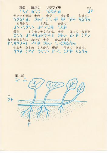209-6.jpg