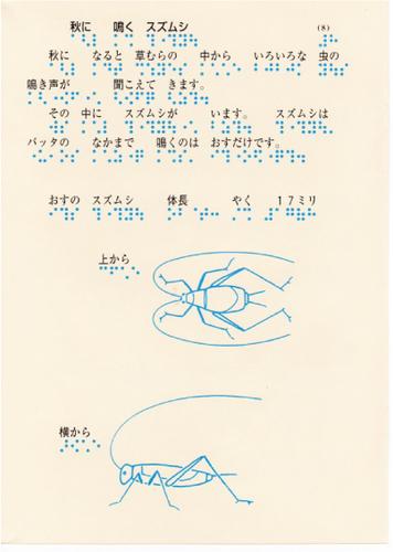 209-8.jpg